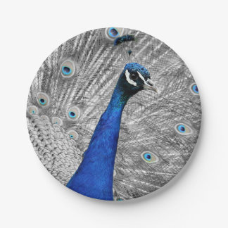 Majestic Peacock Paper Plate