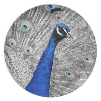 Majestic Peacock Plate