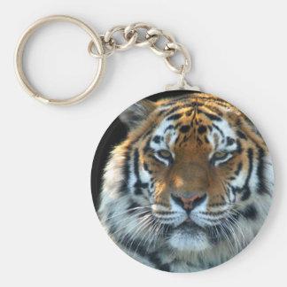 Majestic Sumatran Tiger Keychain