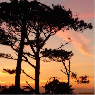 Majestic, Timeless, Sunset Acrylic Cut Outs