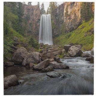 Majestic Tumalo Falls in Central Oregon USA Napkin