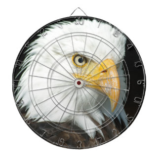 Majestic white and brown Bald Eagle posing Dartboard