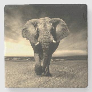Majestic Wild Bull Elephant in Sepia Stone Coaster