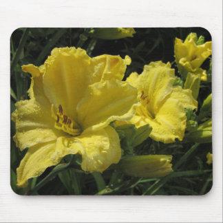 Majestic Yellow Daylilies Mouse Pad