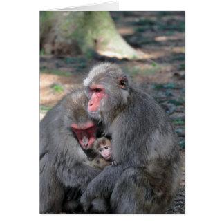 Makakenfamilie Card