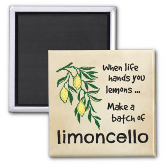 Make a Batch of Limoncello Magnet