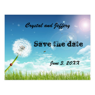 Make a Wish Wedding Save the Date Postcard