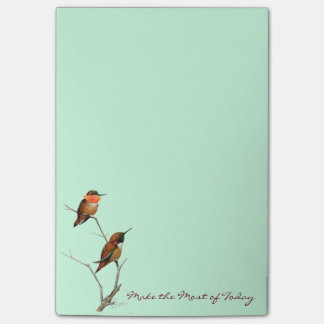 Make the Most of Today: Rufous Hummingbirds Art Post-it® Notes