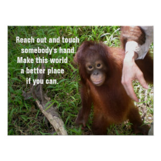 Making Friends Orangutan Wildlife Poster