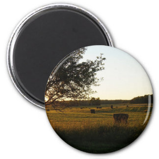 Making hay while the sun shines 2 inch round magnet
