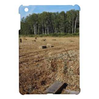Making Hay While the Sun Shines Case For The iPad Mini