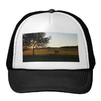 Making hay while the sun shines trucker hat