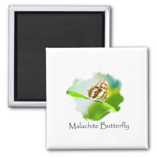 Malachite Butterfly on a Green Leaf Square Magnet