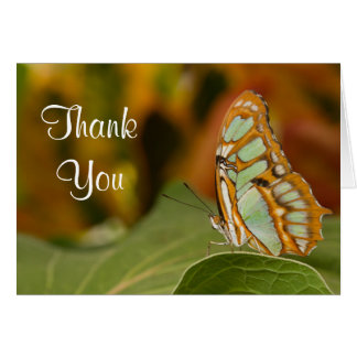 Malachite Butterfly Thank you Card