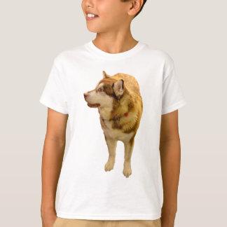 Malamute 01 T-Shirt