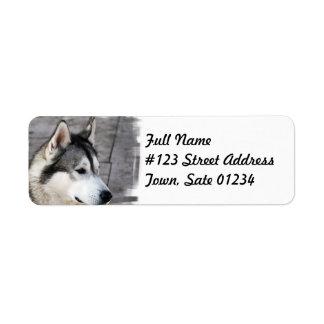 Malamute Dog Mailing Label Return Address Label