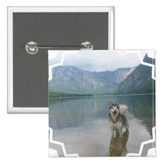 Malamute Dog Square Pin