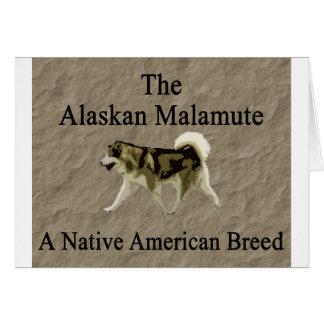 Malamute- Native Breed copy Card