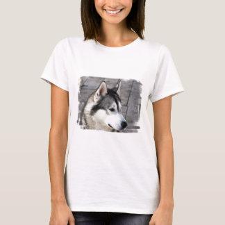 Malamute Photo Ladies Fitted T-Shirt