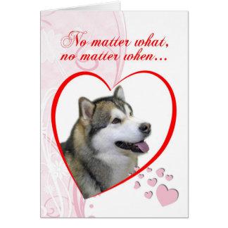 Malamute Valentine's Day Card