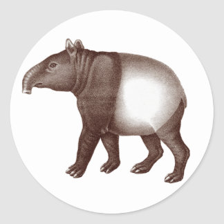 Malayan Tapir / Asian Tapir - Stickers