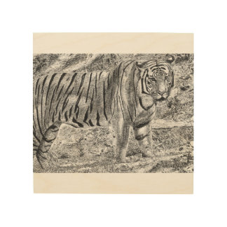 Malayan Tiger Wood Canvas
