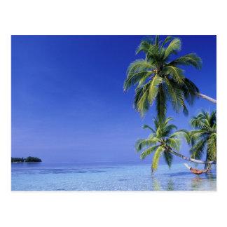 Maldives, Felidhu Atoll. Man relaxing in hammock Postcard