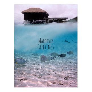 Maldives Greetings Snorkeling Fun Souvenir Postcard