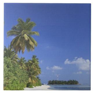 Maldives, Meemu Atoll, Medhufushi Island Ceramic Tile