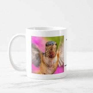 Male Allen's Hummingbird Mug