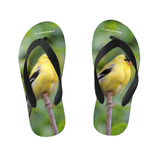 Male American Goldfinch on the Bamboo Kid's Flip Flops