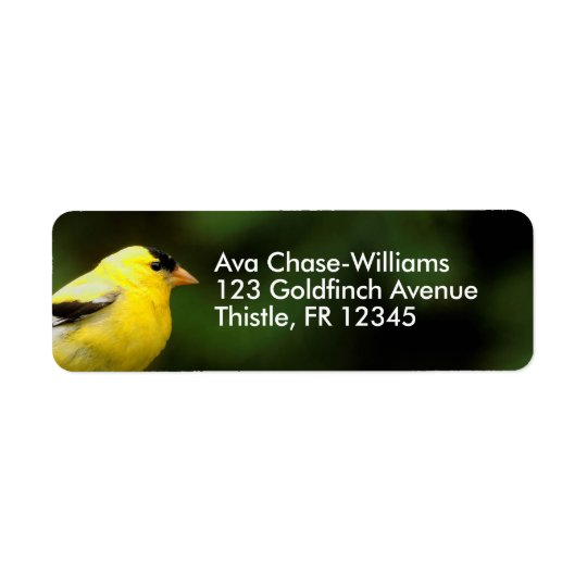 Male American Goldfinch on the Bamboo Return Address Label