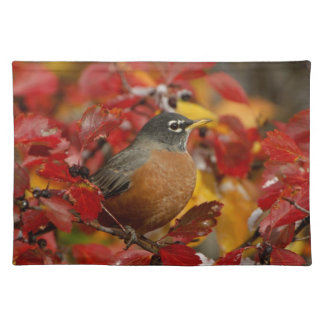Male American Robin in Black Hawthorn 2 Place Mats