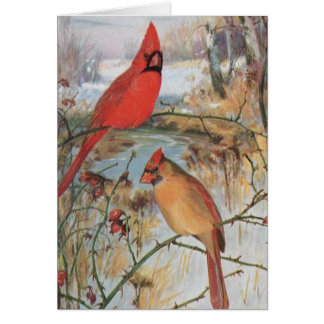 Male and Female Cardinal on Branches Card