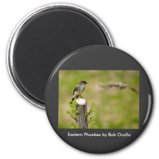 Male and Female  Eastern Phoebes 2 Inch Round Magnet