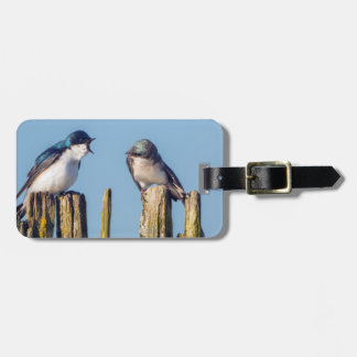 Male and female Tree Swallow Tag For Luggage