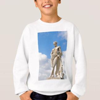 Male beauty sweatshirt
