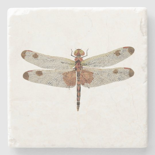 Male Calico Pennant Dragonfly Coaster Stone Beverage Coaster
