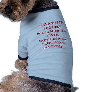 male chauvinist pig joke dog clothing
