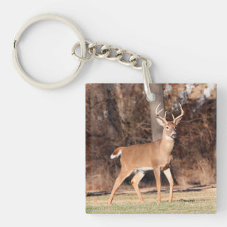 Male Deer Double-Sided Square Acrylic Keychain