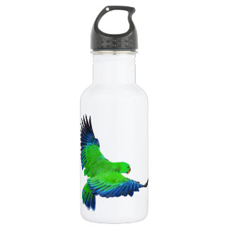 Male Eclectus 532 Ml Water Bottle