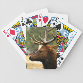 Male Elk Bicycle Playing Cards