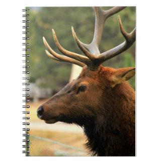 Male Elk Notebook