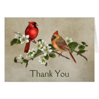 Male Female Cardinals Dogwoods Thank You Note Card
