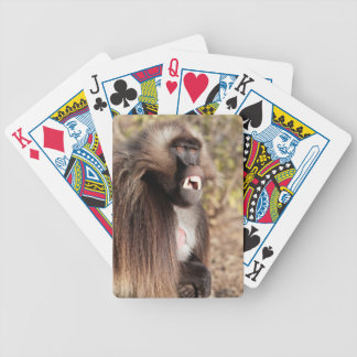 Male gelada baboon (Theropithecus gelada) Bicycle Playing Cards