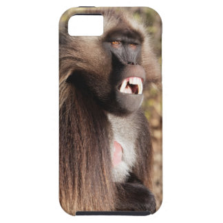 Male gelada baboon (Theropithecus gelada) Case For The iPhone 5