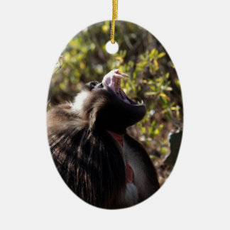 Male gelada baboon (Theropithecus gelada) Ceramic Ornament