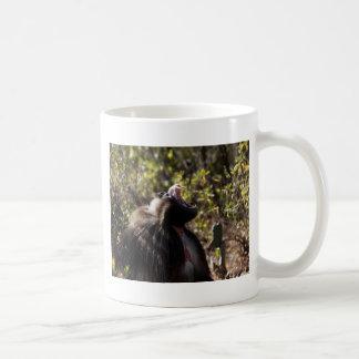 Male gelada baboon (Theropithecus gelada) Coffee Mug