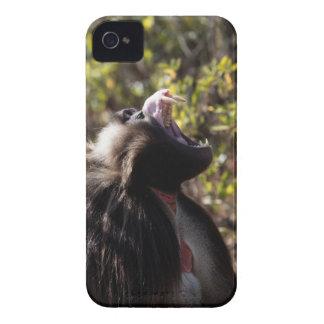 Male gelada baboon (Theropithecus gelada) iPhone 4 Case-Mate Case