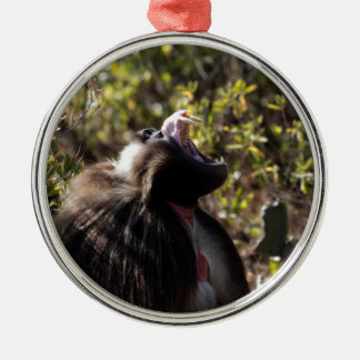Male gelada baboon (Theropithecus gelada) Metal Ornament